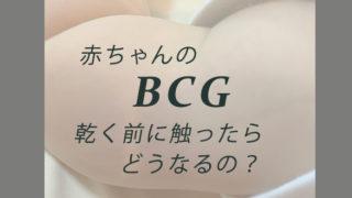 BCG接種直後もし触ってしまったら