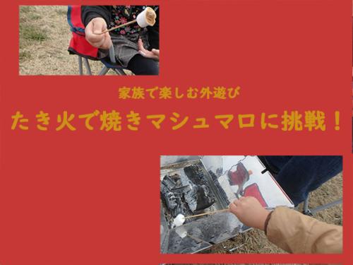 たき火(キャンプファイヤー)で焼マシュマロ