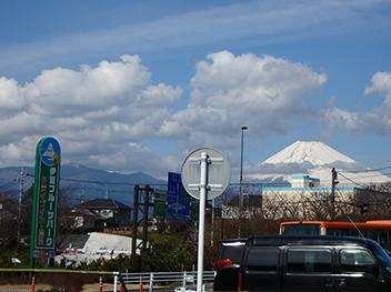 伊豆フルーツパークから見える富士山