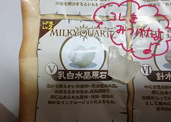 「水晶発見」でミルキークォーツ(乳白水晶原石)が出てきた!