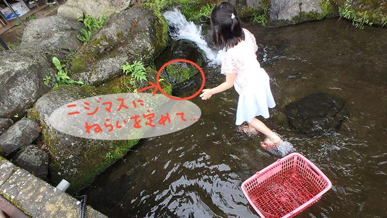 富士見釣り堀(山梨)のニジマスつかみ取り場でニジマスにロックオン