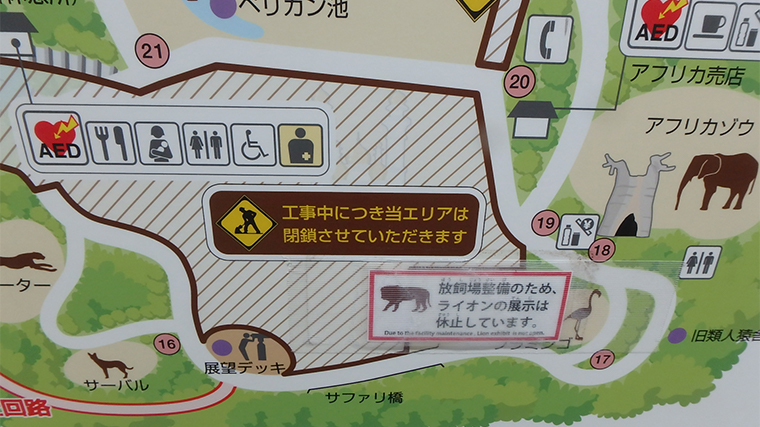 多摩動物公園。再開園後の2020年6月。工事中につきライオン展示は休止中