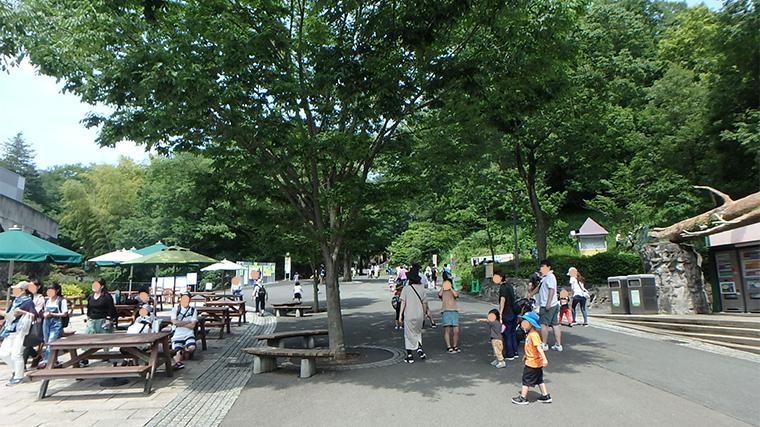 多摩動物公園(コロナ後)開園直後は比較的空いている。園内入ってすぐの画像