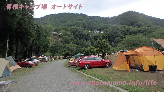 緑の休暇村青根キャンプ場のオートキャンプ場の写真(神奈川県)