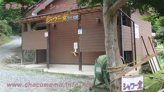 緑の休暇村青根キャンプ場のシャワー室の写真(神奈川県)