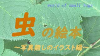 虫の絵本紹介 写真無しのイラスト編 年齢別リスト