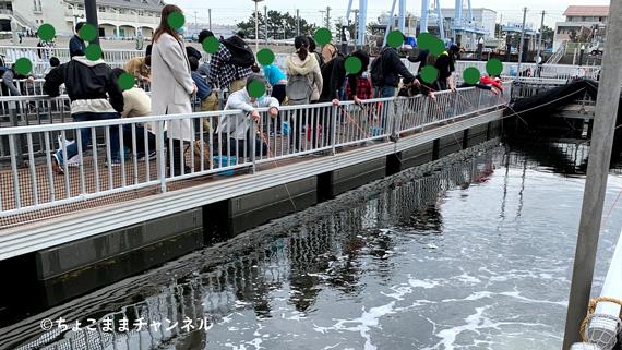 八景島シーパラダイスうみファーム釣り堀
