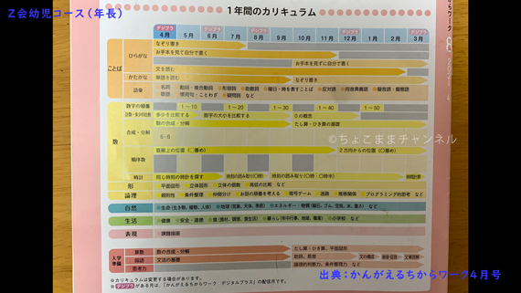 Z会幼児コースのかんがえるちからワーク1年間カリキュラム(年長向け通信教育)