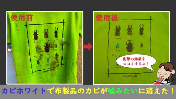 カビホワイトカビソフト除去スプレーの使用前後の効果比較口コミ写真【緑色ラベル】効果的カビ取り剤
