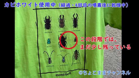 カビホワイトカビソフト除去スプレー使用中の経過口コミブログ内画像 【衣類】 【緑色ラベル】