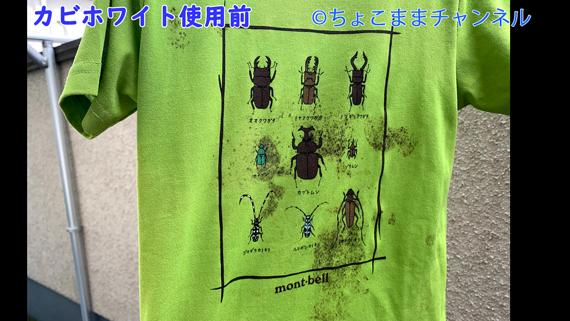 カビホワイトカビソフト除去スプレー使用前の口コミブログ内画像 【衣類】 【緑色ラベル】