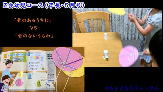 Z会幼児コースで体験教材「骨のあるうちわと無いうちわ」(年長向け通信教育)